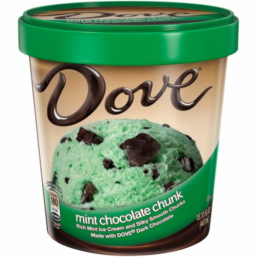 Dove Mint Chocolate Chunk Ice Cream Perspective: front