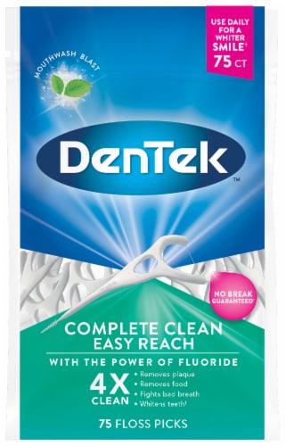 DenTek Complete Clean Easy Reach Floss Picks Perspective: front