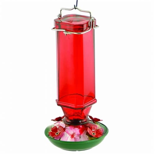 Audubon-Woodlink Glass Humminbird Feeder 16 Ounce Red Perspective: front