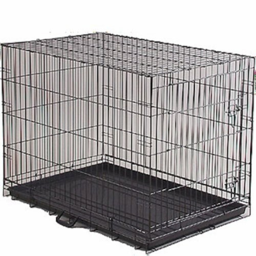 Economy Dog Crate - Medium Perspective: front