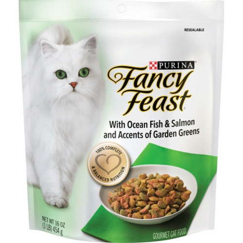 Fancy Feast With Ocean Fish & Salmon and Accents of Garden Greens Dry Cat Food Perspective: front