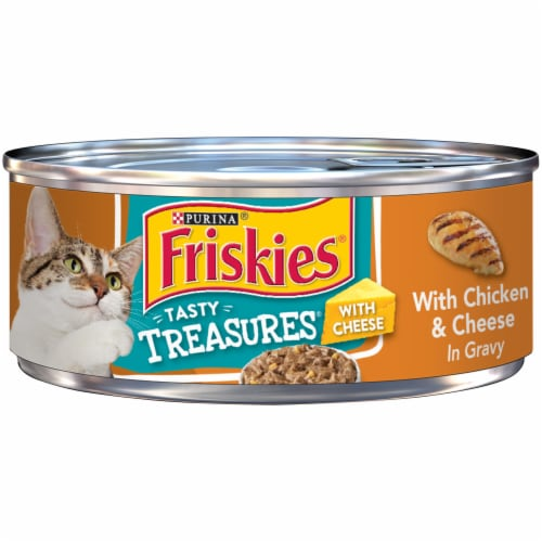 Friskies Tasty Treasures with Chicken & Cheese in Gravy Wet Cat Food Perspective: front
