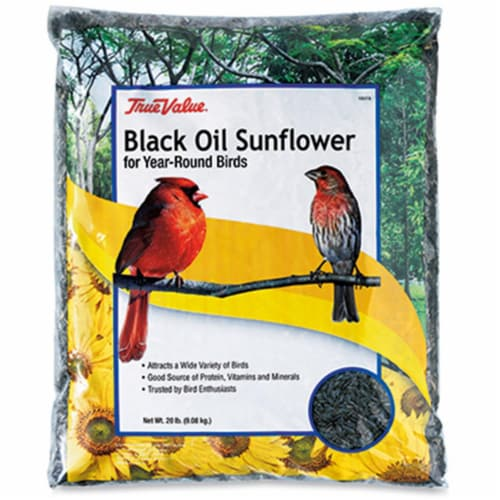 JRK Seed & Turf Supply 106363 True Value 20 lbs Sunflower Bird Seed Perspective: front