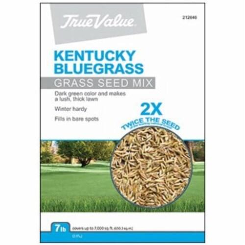Barenbrug USA 212646 TV 7LB KY BLUgrass Seed, TV 7 lbs Kentucky BLUgrass Seed Perspective: front