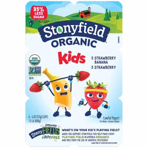 Stonyfield Organic Kids Strawberry & Strawberry Banana Lowfat Yogurt 6 Count Perspective: front