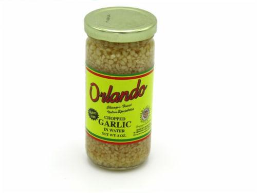 Orlando Chopped Garlic Perspective: front