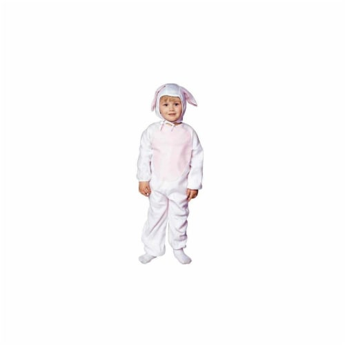 RG Costumes 70014-T Honey Bunny Costume - Size Toddler Perspective: front