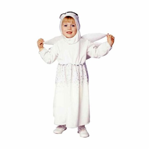 RG Costumes 70154-T Angel Dress With Wings Costume - Size Toddler Perspective: front