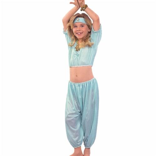 Rg Costumes 19188-L Aladin Princess Costume - Agua, Lagre Perspective: front