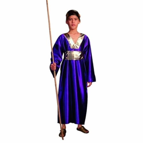 RG Costumes 90181-L Wiseman Costume - Purple - Size Child Large 12-14 Perspective: front