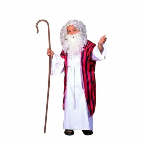 RG Costumes 90184-L Moses Costume - Size Child Large 12-14 Perspective: front