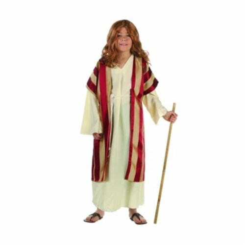 RG Costumes 90284-L Deluxe Moses Costume - Size Child Large 12-14 Perspective: front