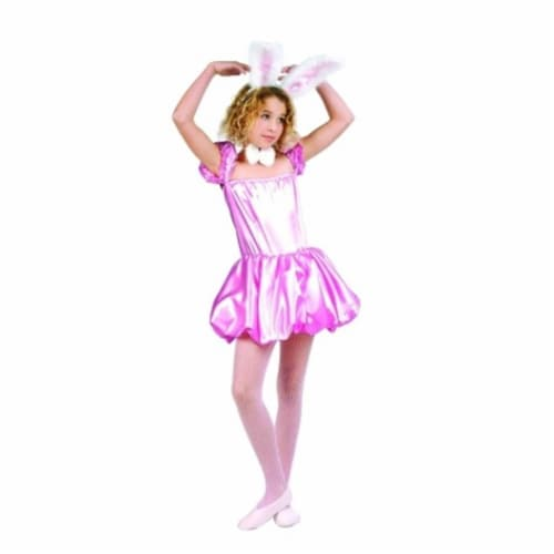 RG Costumes 91412-L Honey Bunny Costume - Size Child Large 12-14 Perspective: front