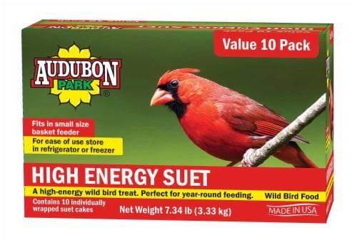 Audubon Park High Energy Suet Wild Bird Food Perspective: front