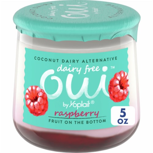 Oui by Yoplait Raspberry Dairy Free Coconut Dairy Alternative Perspective: front