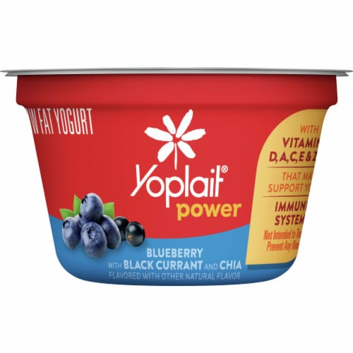 Yoplait® Power Blueberry with Black Currant and Chia Low Fat Yogurt Perspective: front