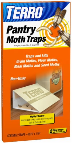 TERRO® Pantry Moth Traps Perspective: front