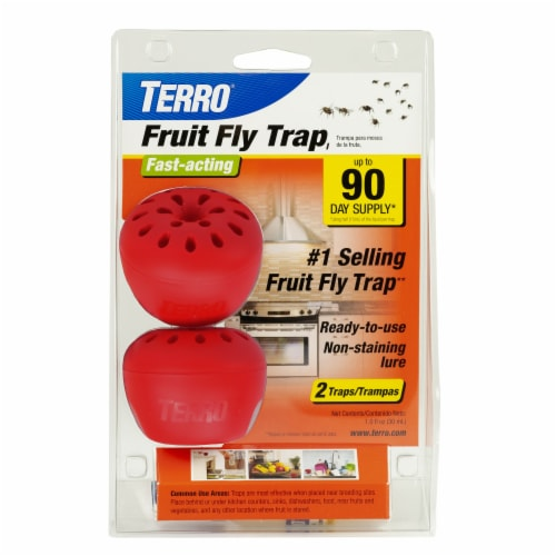 TERRO® Fruit Fly Trap - 2 Pack Perspective: front