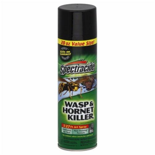 Spectracide Wasp & Hornet Killer Perspective: front