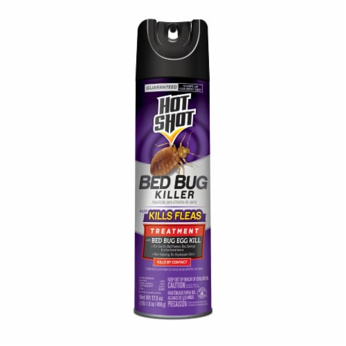 Hot Shot® Bed Bug Killer Aerosol Spray Perspective: front
