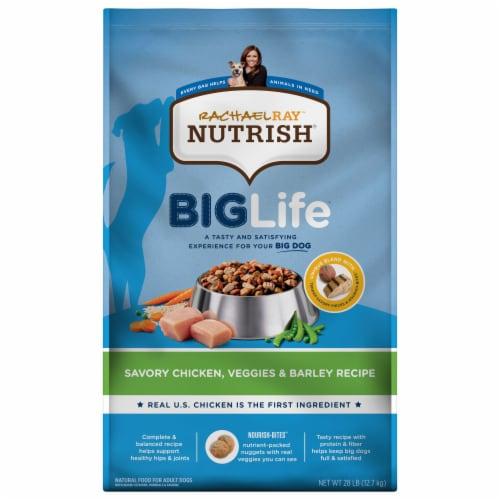 Rachael Ray Nutrish Big Life Savory Chicken Veggie & Barley Dry Adult Dog Food Perspective: front