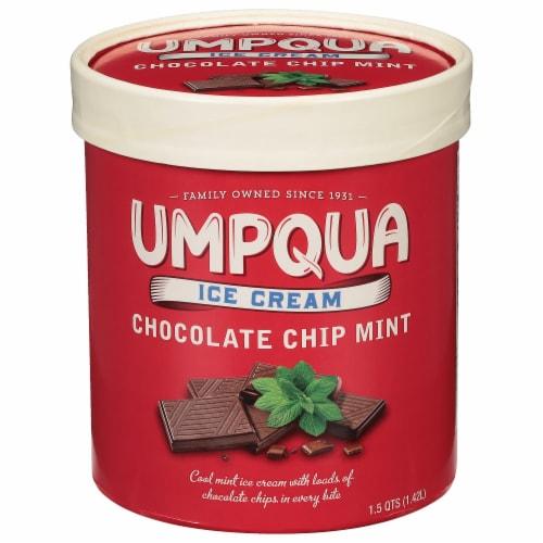 Umpqua Mint Chocolate Chip Ice Cream Perspective: front