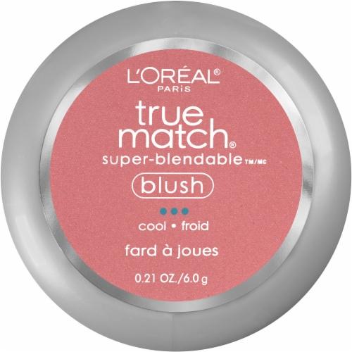 L'Oreal Paris True Match Spiced Plum Super-Blendable Blush Perspective: front