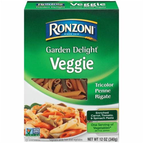 Ronzoni Garden Delight Veggie Tricolor Penne Rigate Pasta Perspective: front