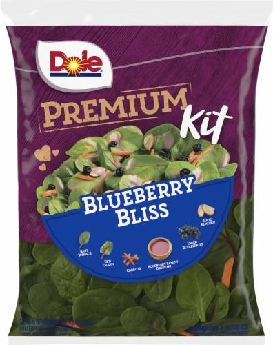 Dole Premium Blueberry Bliss Salad Kit Perspective: front