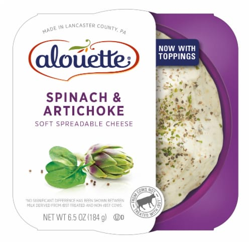 Alouette Spinach & Artichoke Soft Spreadable Cheese Perspective: front