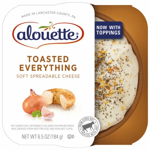 Alouette Toasted Everything with Sea Salt Spreadable Cheese Perspective: front