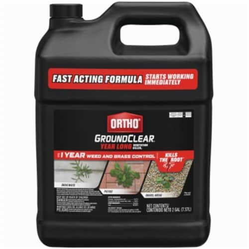 Scotts Ortho Roundup 262073 2 gal Concentrate Groundclear Vegetation Killer Perspective: front
