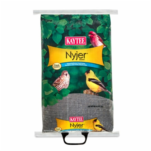 Kaytee Products 100033693 20 lbs. Nyjer & Thistle Seed Perspective: front