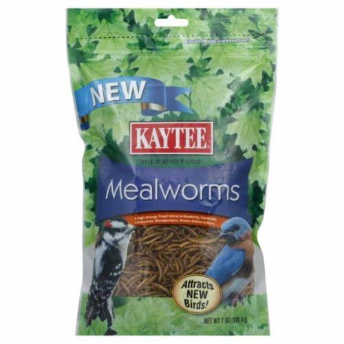 Kaytee Mealworm Perspective: front