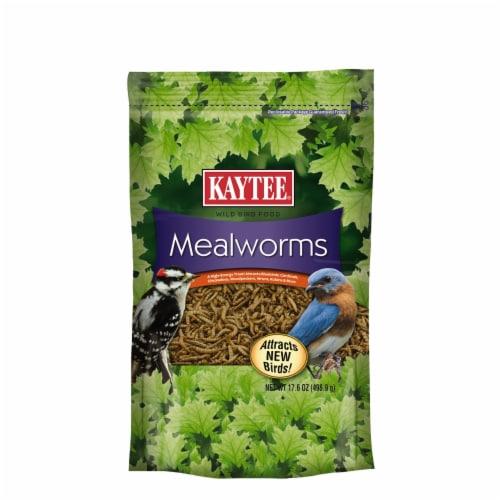 Kaytee Mealworms Wild Bird Food Perspective: front