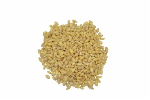 Torn & Glasser Barley Pearls Perspective: front