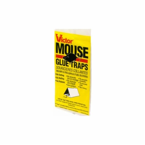 Woodstream 310114400 Mouse & Insect Glue Trap Perspective: front