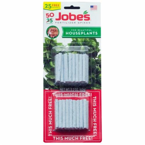 Jobe's Houseplant Fertilizer Spikes Perspective: front