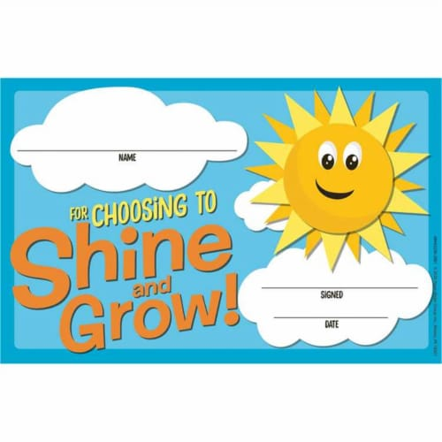 Growth Mindset Choosing to Shine & Grow Recognition Award, Pack of 36 Perspective: front