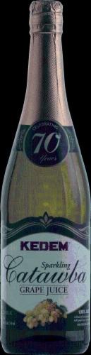 Kedem Sparkling Catawba Grape Juice Perspective: front