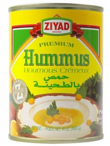 Ziyad Hummos Tahini Dip Perspective: front