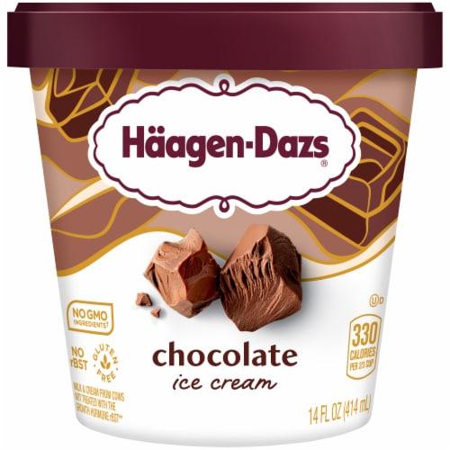 Haagen-Dazs Gluten Free Chocolate Ice Cream Perspective: front