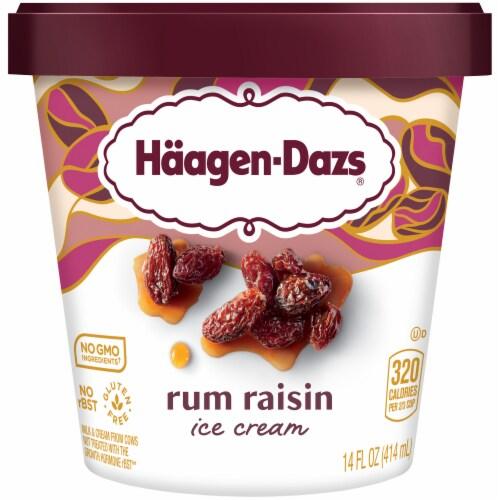 Haagen-Dazs Rum Raisin Ice Cream Perspective: front