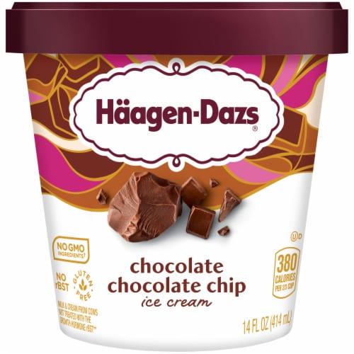 Haagen-Dazs Chocolate Chocolate Chip Ice Cream Perspective: front