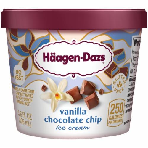 Haagen-Dazs Gluten Free Vanilla Chocolate Chip Ice Cream Cup Perspective: front
