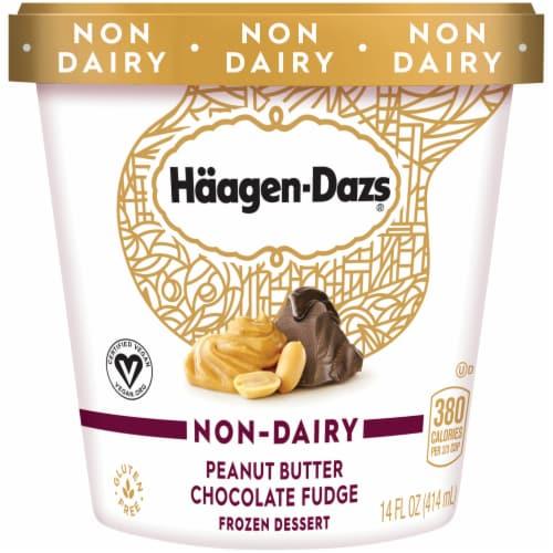 Haagen-Dazs Non-Dairy Peanut Butter Chocolate Fudge Frozen Dessert Perspective: front