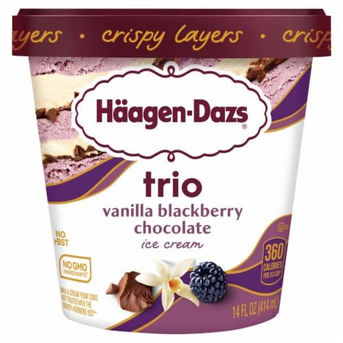 Haagen-Dazs Vanilla & Blackberry Belgian Chocolate Trio Crispy Layers Ice Cream Perspective: front