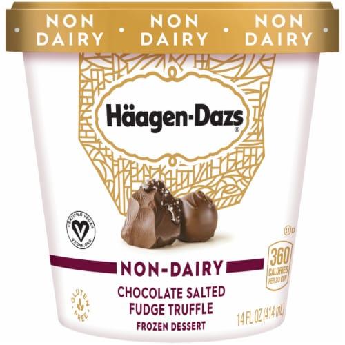 Haagen-Dazs Non-Dairy Gluten Free Chocolate Salted Fudge Truffle Frozen Dessert Perspective: front