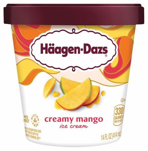 Haagen-Dazs Creamy Mango Ice Cream Perspective: front