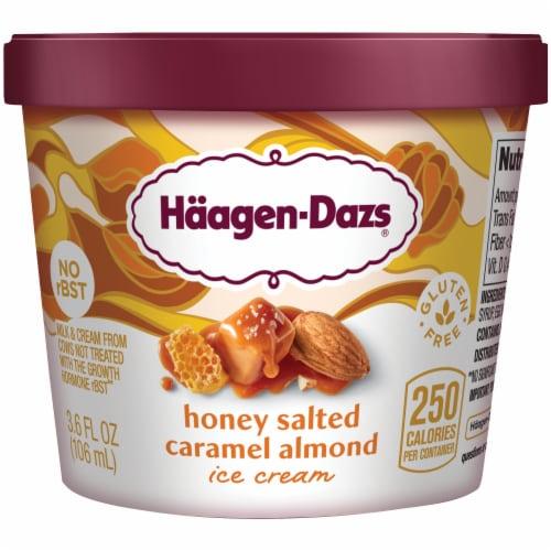 Haagen-Dazs Gluten Free Honey Salted Caramel Almond Ice Cream Perspective: front